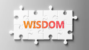 Wisdom complex like a puzzle - pictured as word Wisdom on a puzzle pieces to show that Wisdom can be difficult and needs cooperating pieces that fit together