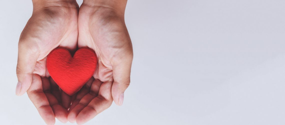 heart on hand for philanthropy concept / woman holding red heart in hands for valentines day or donate help give love warmth take care