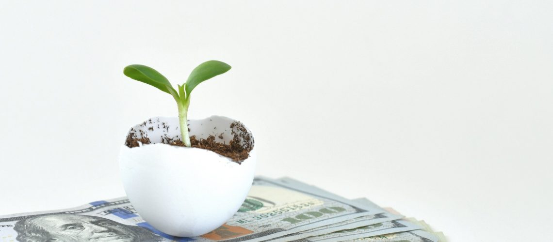 Financial growth concept- A sprout growing out of an eggshell on a stack of cash dollars bills